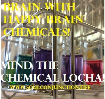 Mind The Chemical Locha! Rewire your Brain with Happy Brain Chemicals!